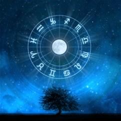 Mis on tähtedesse kirjutatud aastal 2014?