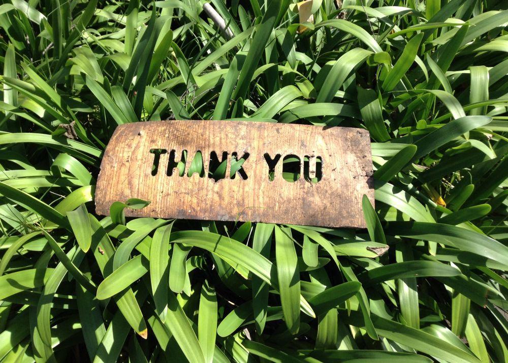 Näita välja oma tänulikkust