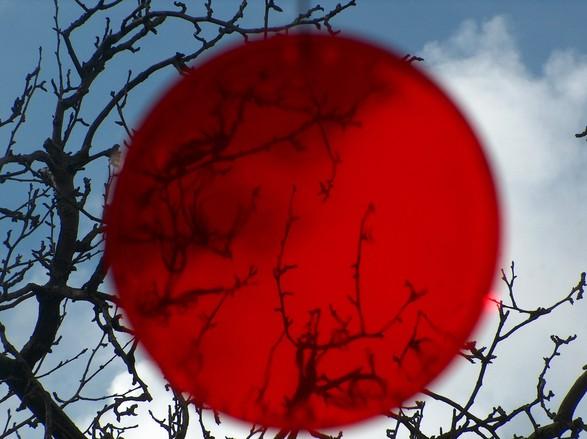 """SAMURAIKOODEKS! 12 mõtlemapanevat käitumisreeglit """"Samuraikoodeksist"""""""