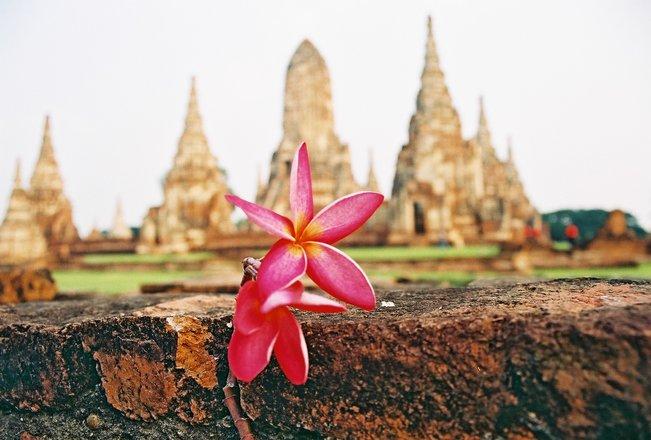 10 surematut tarkust Buddhalt