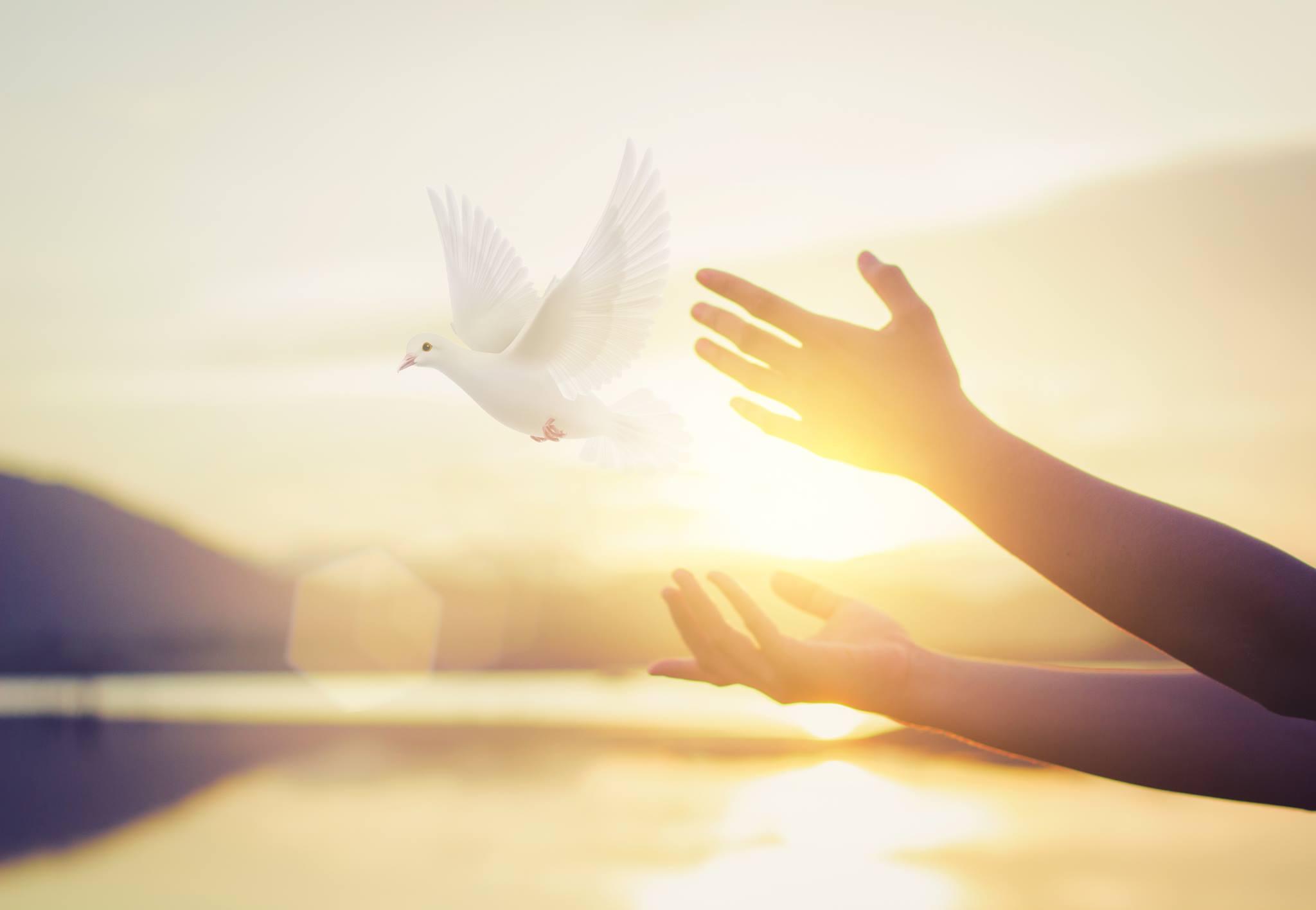 Mõtte muutus muudab kõike! 39 inspireerivat tsitaati vaimu, mõtete ja tunnete kohta
