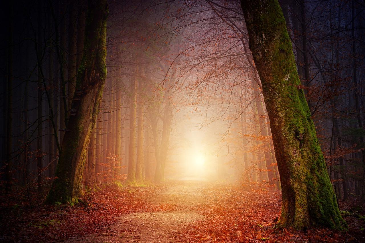 """Raamatust """"Valgus tunneli lõpus"""": depressioon ei ole füüsiline haigus"""