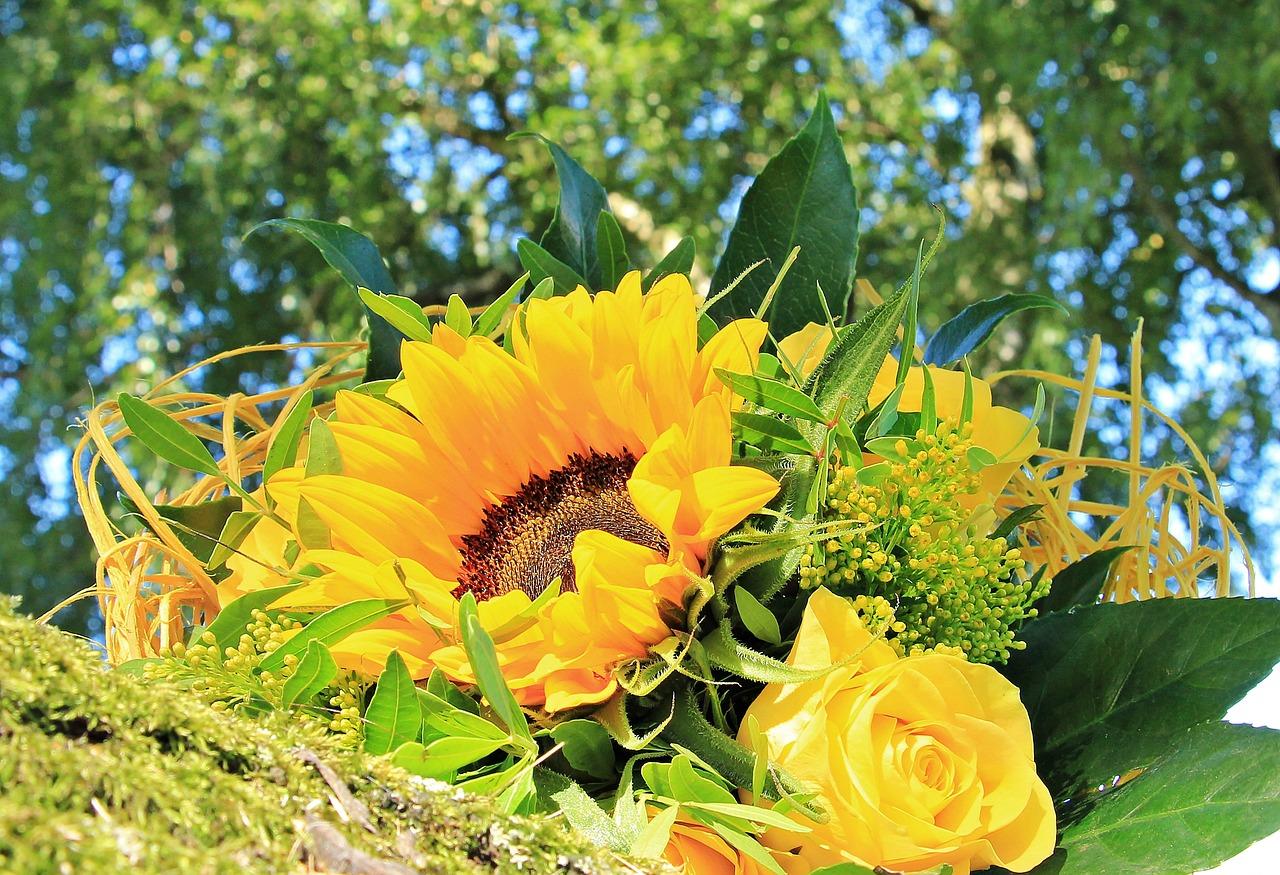 lilled.Pixabay