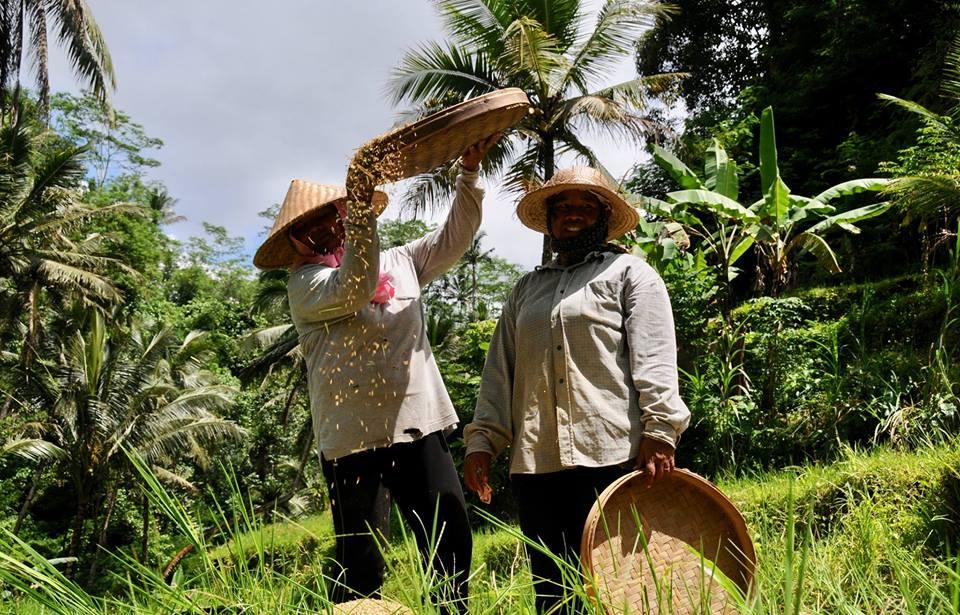 Kas sina oled Bali väereisil juba käinud?