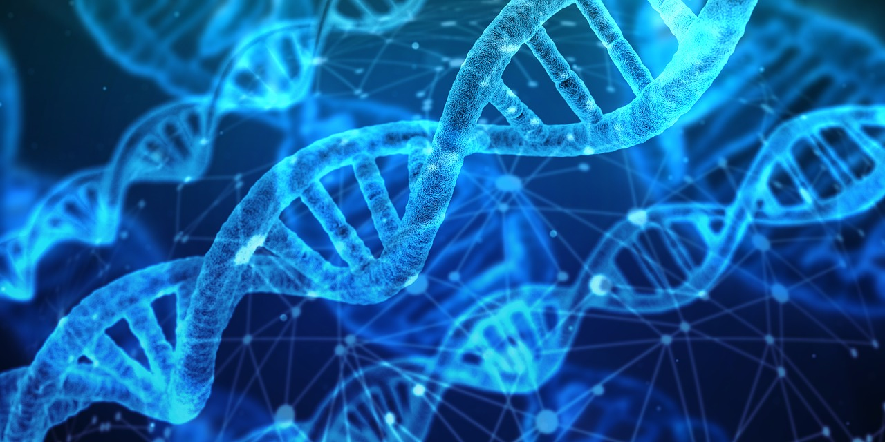 Mai-Agate Väljataga: kätte jõuab uue DNA-ga inimeste ajastu!