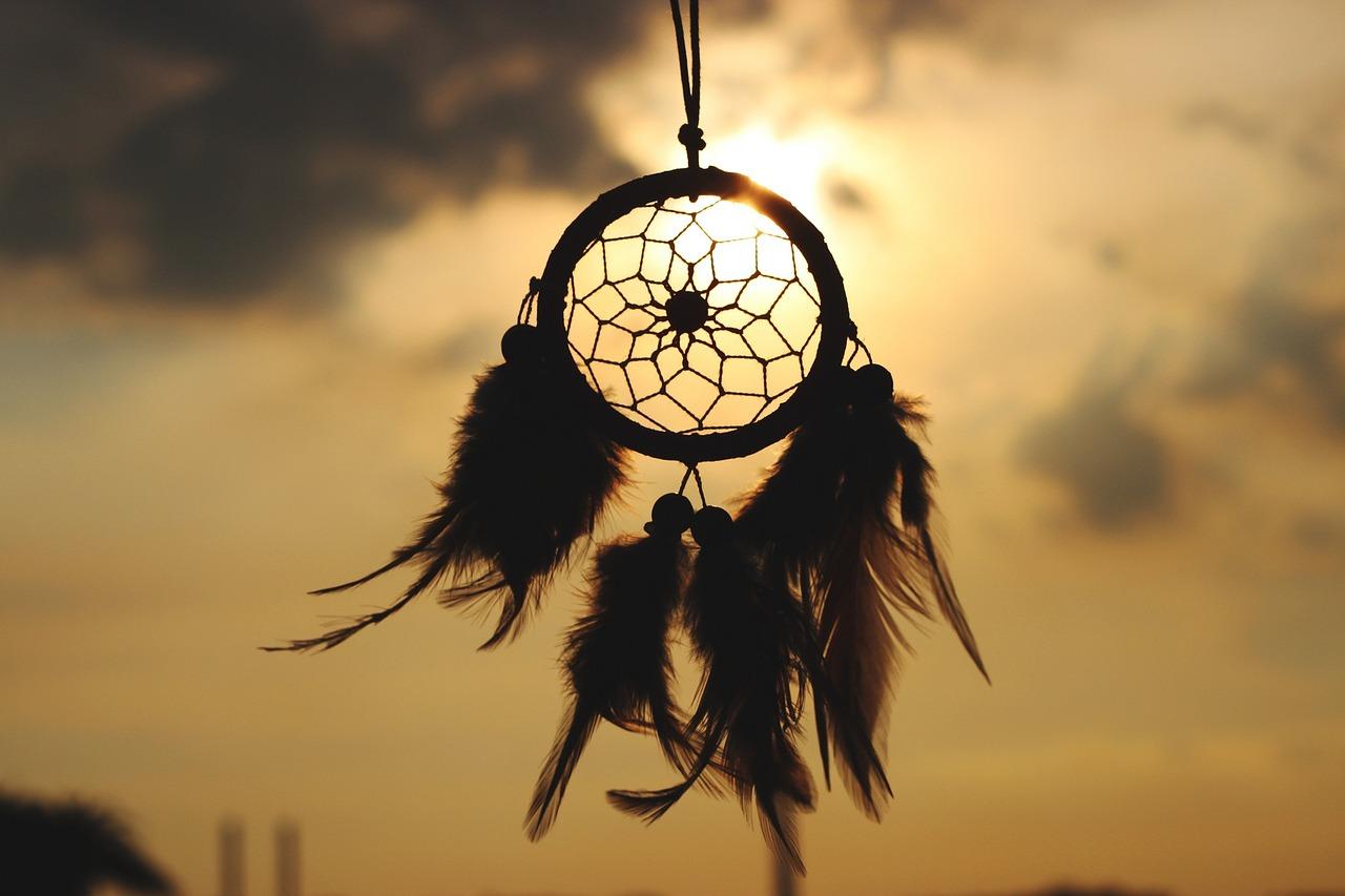 Kogume unenägusid! Millest unistad unes sina? Milliseid unenägusid näed?