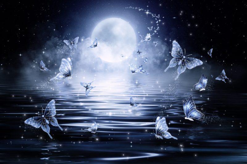 Sri Bhagavan: selleks, et olla kannatustest vabastatud, peate algul mõistma, mis on kannatus