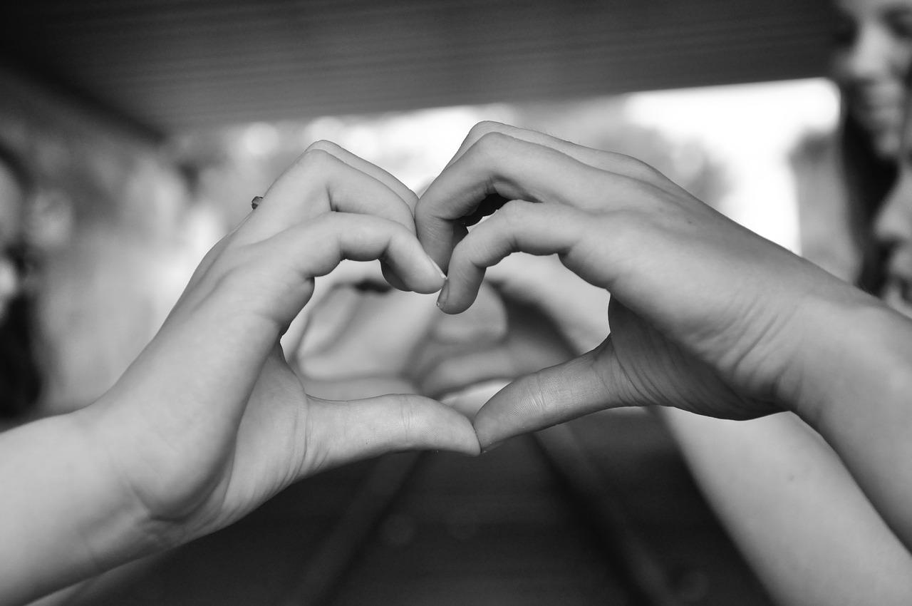 süda.Pixabay2