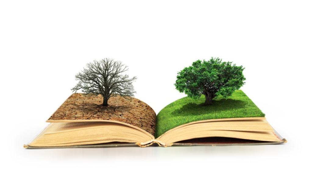 Concept,Of,Changes.,Open,Book.,One,Side,Full,Of,Grass